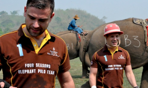 Carlos Melia plays Elephant Polo!