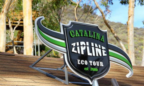 How To Float at 45 mph - Ziplining on Catalina
