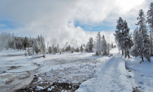 A Winter Guide to Yellowstone