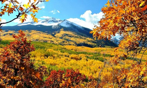 Fallorado: Leaf Peeping in the Rocky Mountain Empire