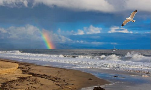Gay Santa Barbara: The Inside Scoop on California's Off the Beaten Path Wine Country